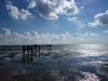 nordfriesisches_wattenmeer